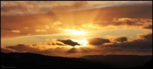 Evening Sunlight