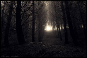 Song of the Dead by FlorentCourty