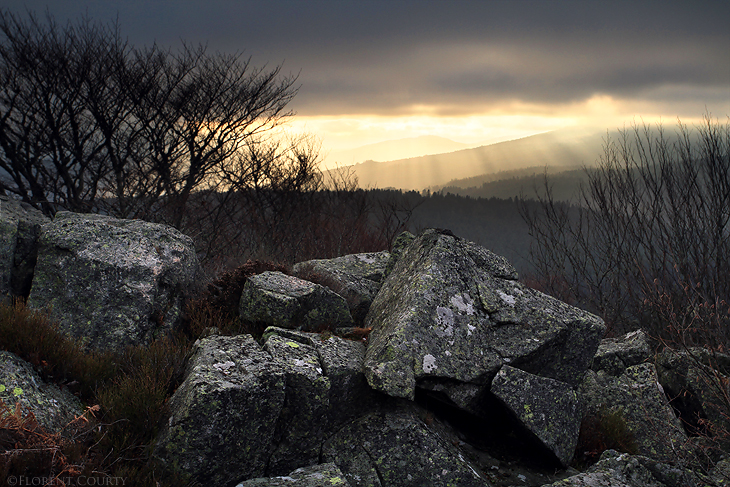 Breakin' the grey by FlorentCourty