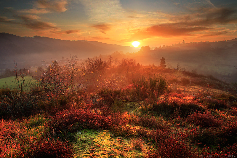 Fantasy Realm by FlorentCourty