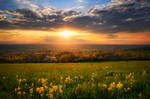 Spring Celebration by FlorentCourty