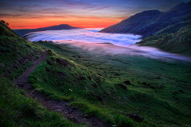 Wilderness' Magic by FlorentCourty