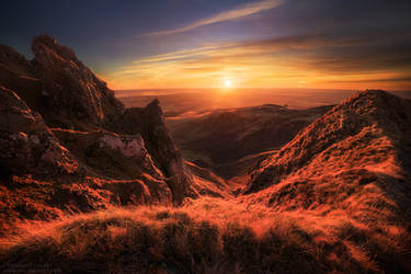 Dragon Spikes by FlorentCourty