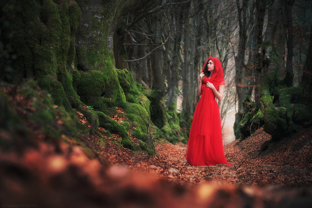 Heart of the Woods by FlorentCourty