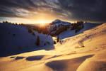 Alpine Reward