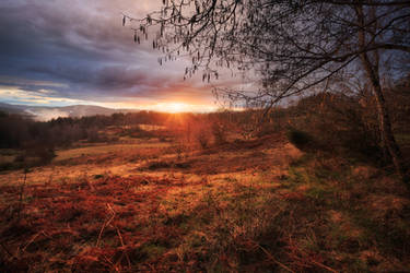 Winter Ending by FlorentCourty