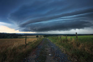 Sky Creature by FlorentCourty
