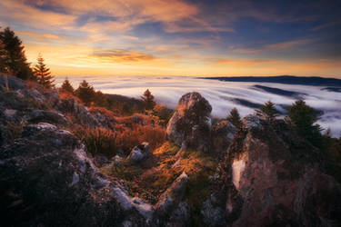 Morning Sea by FlorentCourty
