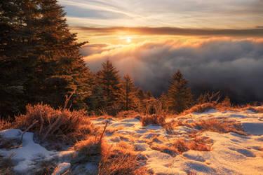Morning Eye by FlorentCourty