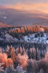 Winter Lights by FlorentCourty