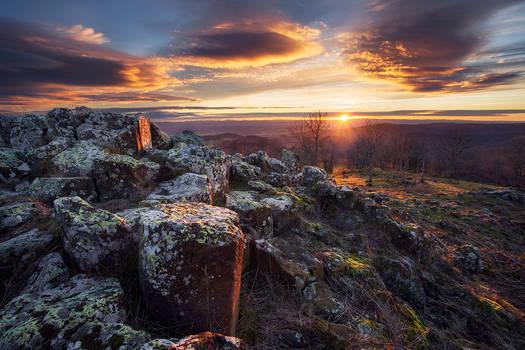Primal sunrise II