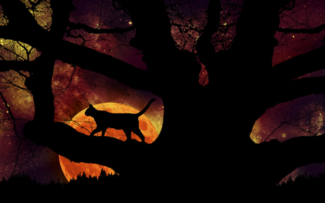 Cool Wallpaper Halloween Magic - magic_of_halloween_night_by_silverbeam-d4cmgka  Graphic_597762.jpg