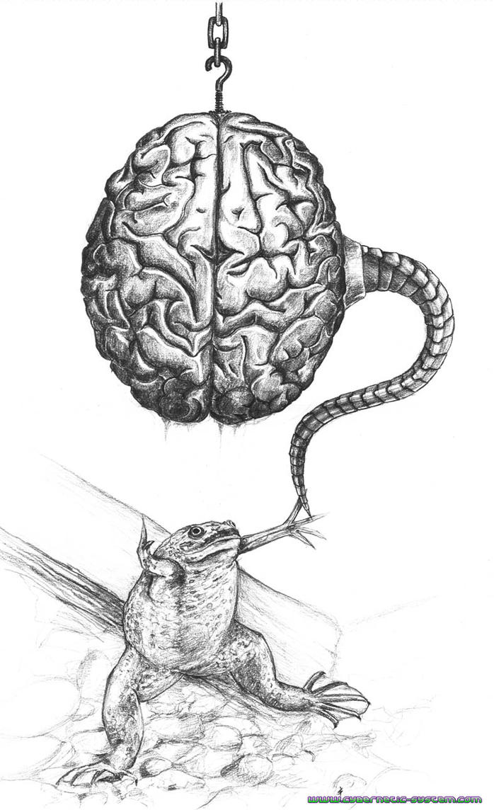 Brain for Frog by Alienjedna