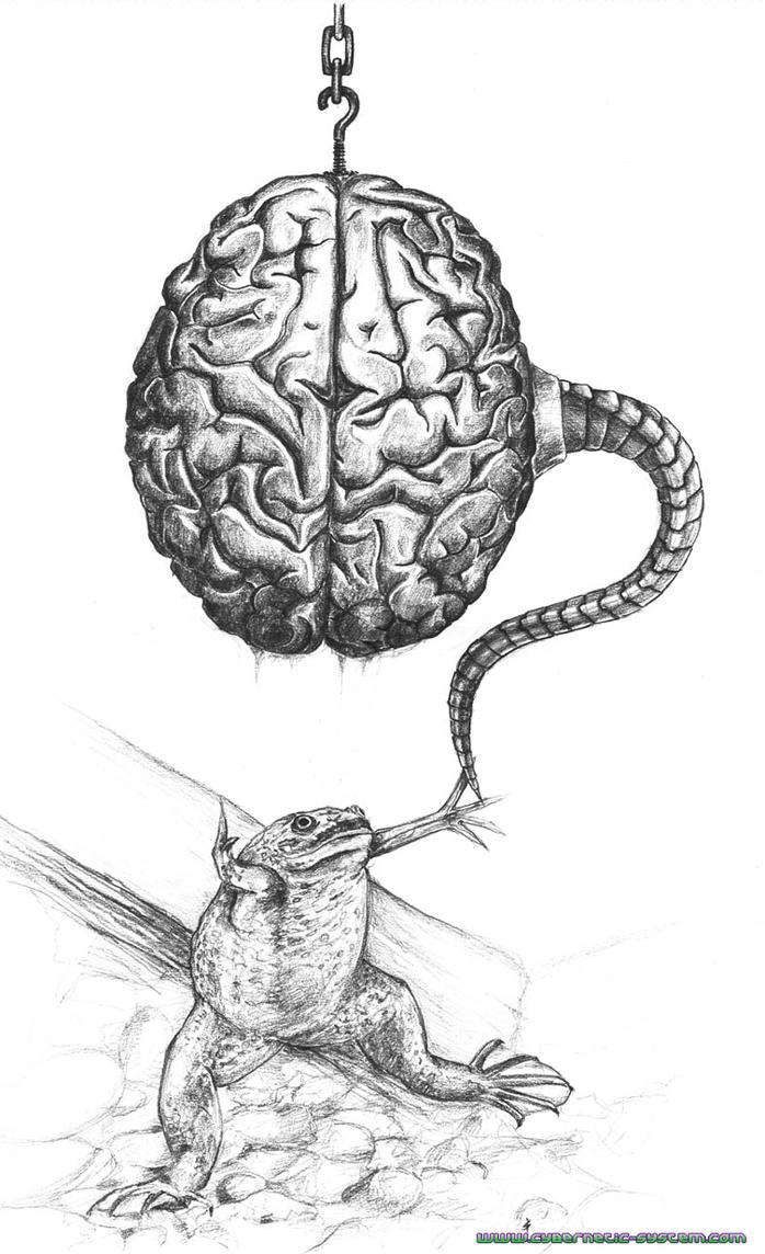 Brain for Frog by Alienjedna