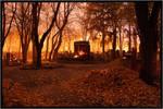 The day of Samhain