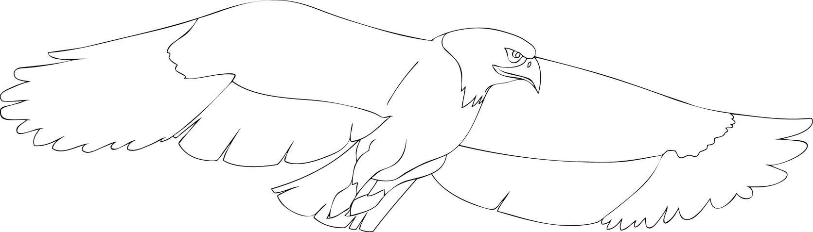 create a eagle by spiritvegeta on deviantart