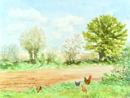 Plowed field on Spring