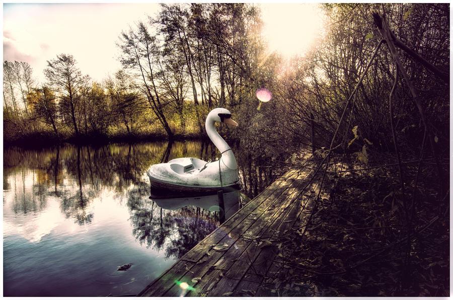 Swan Lake by B5160-R