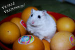 Hary Easter