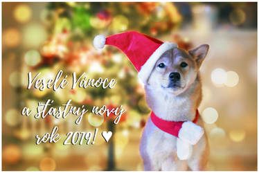 Merry shiba Christmas! by Allerlei