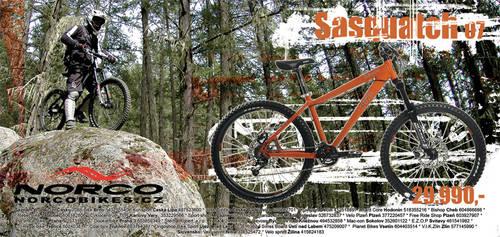 Norco Sasquatch 07 Ad