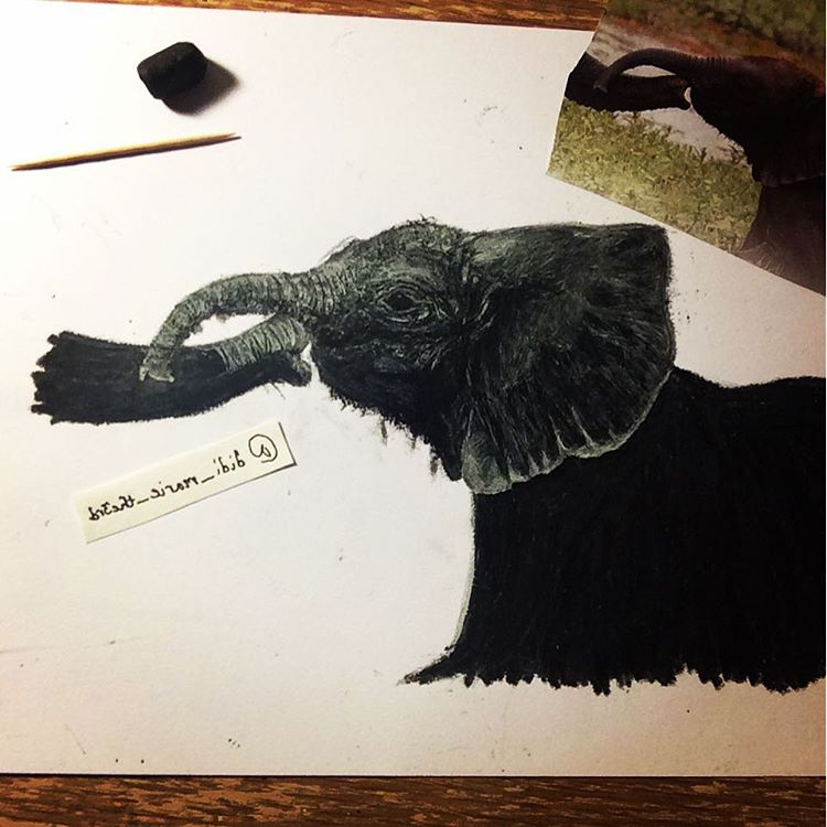 Oil Pastel Scratch Art Elephant by MiraclePemberton