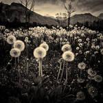 Explorations Aprile 27 2012 by LuGiais