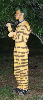 Campsoup1988's Anti-Costume 3