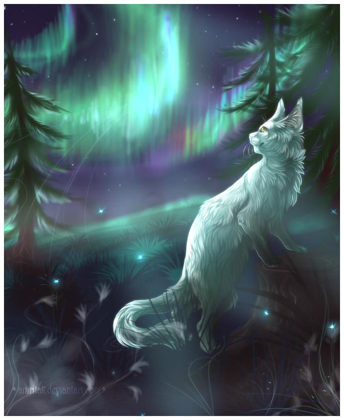 Eternal auroras by Aniritak