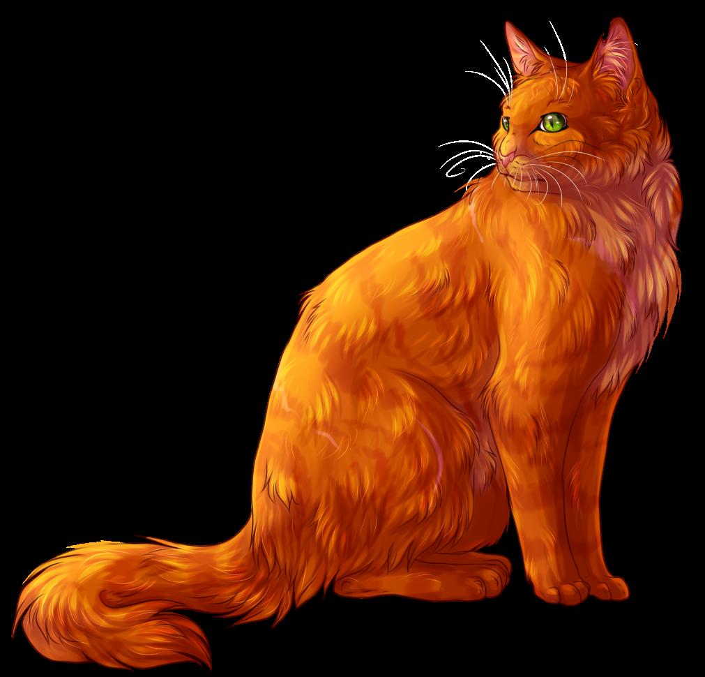 Firestar by Aniritak on DeviantArt Warrior Cat Drawings Firestar