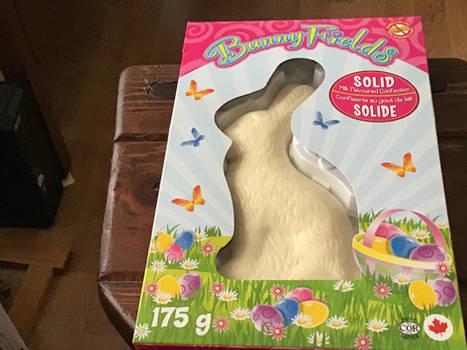 a photo of a milk chocolate bunny