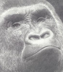 FineArtbyVaughn's Profile Picture