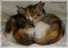 sleep by sillyJasdero