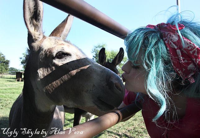 Kiss my ass by uglyshyla