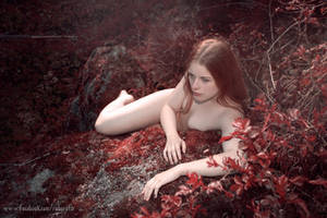 Skogssnuva by Robgrafix