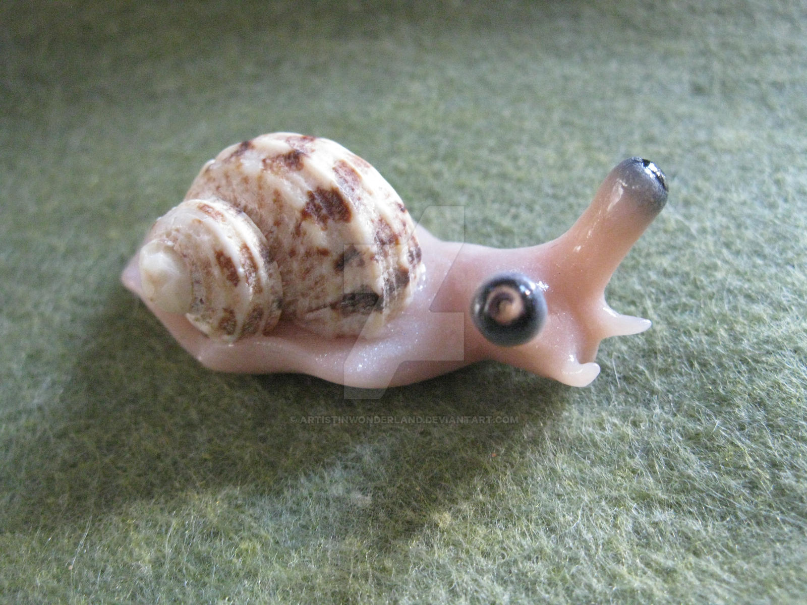 Snail by ArtistinWonderland