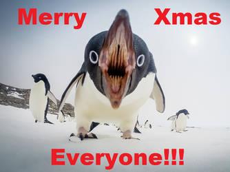 Penguin Xmas by Teasealot