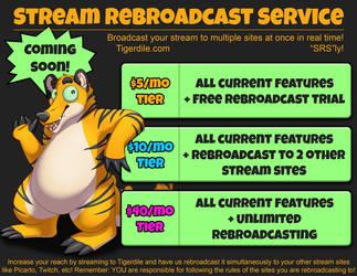 Stream Rebroadcasting Service