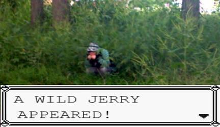 A WILD JERRY