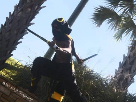 Ninja Umbreon Quick Attack