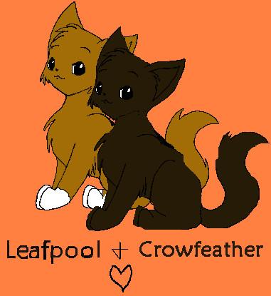 Crowfeather  Warrior Cat Wiki  FANDOM powered by Wikia