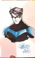 ECCC - Nightwing