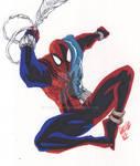 The Sensational Web of Scarlet Spider