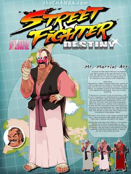 STREET FIGHTER DESTINY: Mr. Martial Arts