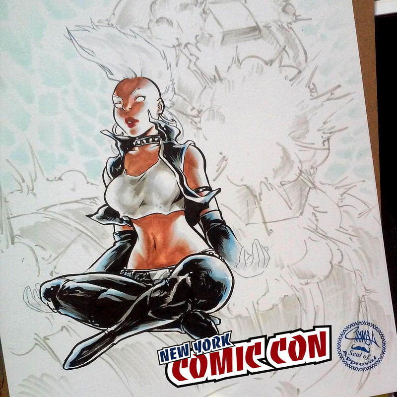 Nycc 01 Marvels Storm By TheCHAMBA