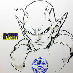 ChamBOOK Headshot - Piccolo by theCHAMBA