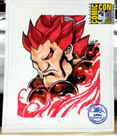 SDCC2015 - Akuma by theCHAMBA