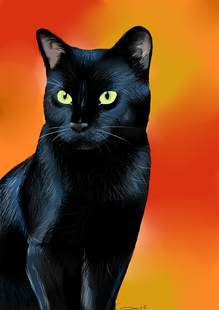 Francis ::COMMISSION:: by Abuses