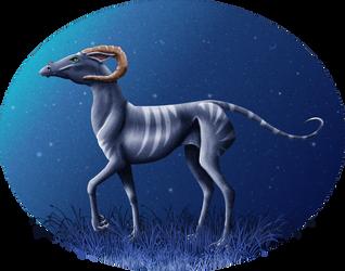 Bunghorse