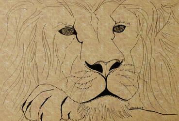 #2 Lion